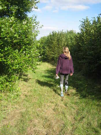 Walking in Bottoms' Corner Wood