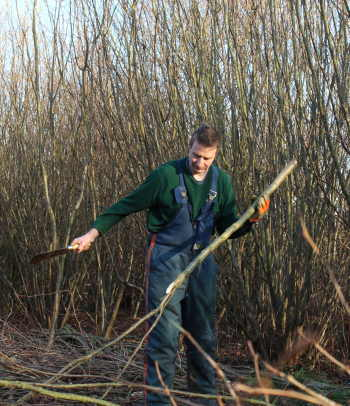 We coppice hazel through each winter