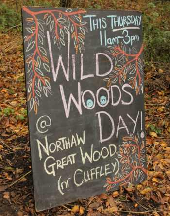 A special woodland day in Hertfordshire
