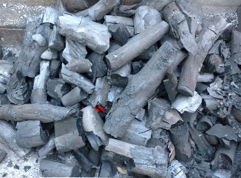 Wassledine's lumpwood charcoal, just lit; ready to cook on in about 20 minutes