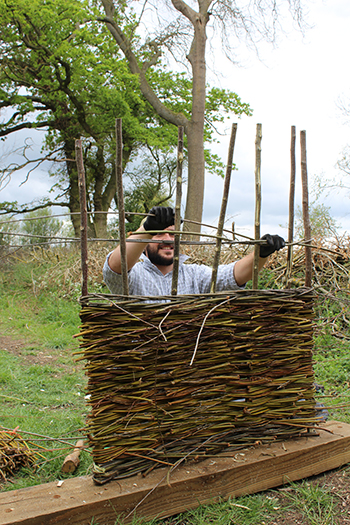 Making a willow hurdle