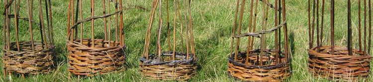 five willow obelisks by Wassledine