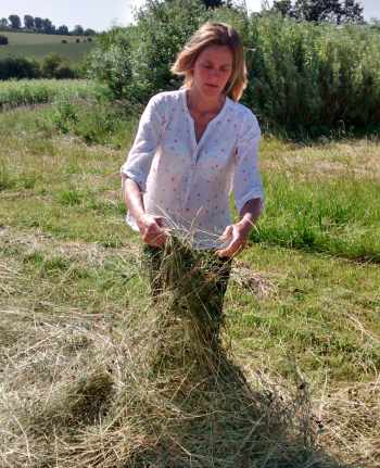 Ready to bale? Making hay for winter feed