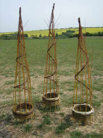 Three 15 inch diameter, 5 feet tall willow obelisks