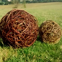 Beautiful willow spheres