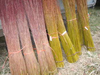 Bundles of willow ready for sale