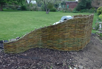 A willow screen designed to hide a Calor gas tank in a Bedfordshire garden - created by Wassledine