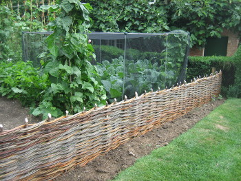 Willow fencing made in situ to create a boundary for a vegetable garden. Created by Wassledine