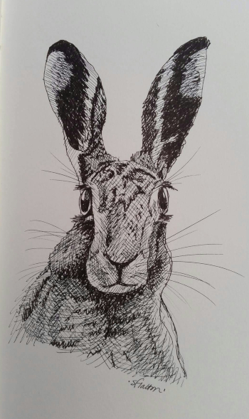 Drawing in the Woods. Wassledine's event on 13th September, featuring Steve Halton