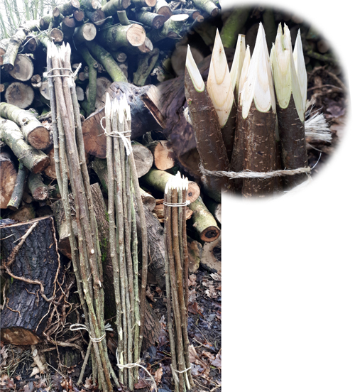 3,4 5 and 6 foot pointed, hazel flower sticks from Wassledine available now