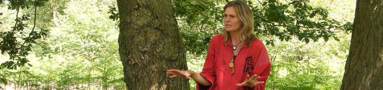 examples of Jane Lambourne's work with schools