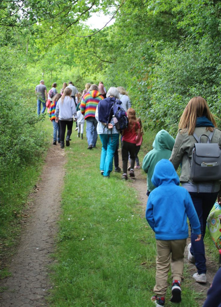 Events in the woods with Wassledine