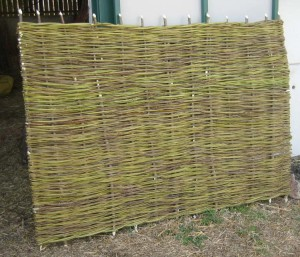 Hurdle in green willow
