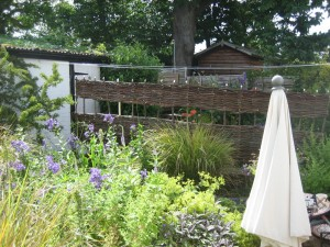Willow fence built in-situ to divide a tiny cottage garden